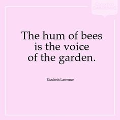 The hum of bees is the voice of the garden. -- Elizabeth Lawrence, quote