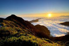 TAWAI // Atop Mount Hehuan