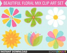 60 OFF Clipart Mixed Flowers Daisy Commercial by SonyaDeHartDesign  https://www.etsy.com/listing/103679571/60-off-clipart-mixed-flowers-daisy?ref=shop_home_active_4