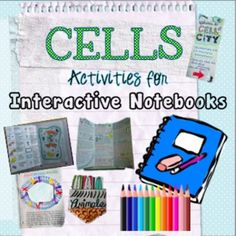 Give your students a creative outlet by using these activities designed for interactive notebooks! This bundle includes 9 separate activities tha. Cell Theory, Plant And Animal Cells, Science Cells, Science Doodles, Cells Activity, 7th Grade Science, Cell Membrane, Creative Outlet, Interactive Notebooks