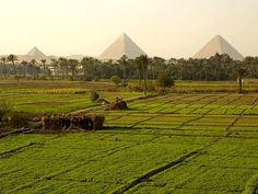 Travel and enjoy Egypt with the best Egypt travel agents. Egypt sunset, the tour operator in Egypt offers an extensive variety of tour packages. Places To Travel, Places To Visit, Pyramids Egypt, Egypt Travel, A Whole New World, Giza, Luxor, Travel Photographer, Cairo
