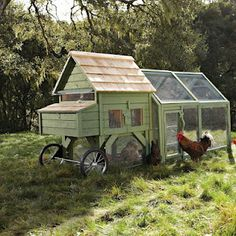 The chicken tractor.