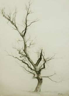 MIGUEL ANGEL OYARBIDE: branches