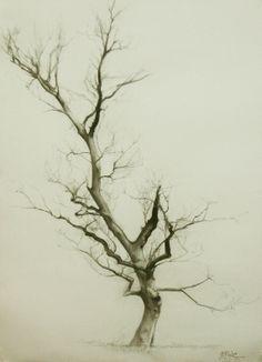 MIGUEL ANGEL OYARBIDE: branches