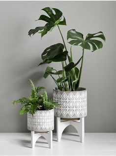 Geometric Standing Planters Made from ceramic with a whitewashed finish, each of our standing planters features debossed soft geometric pattern and white, four legged base. Large Indoor Planters, Indoor Flower Pots, Rustic Planters, Indoor Plant Pots, Basket Planters, Indoor Garden, Pot Jardin, Crochet Home Decor, Plant Decor