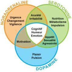 La sérotonine et la dopamine dans le sommeil Coaching Questions, Burn Out, Stressed Out, Positive Attitude, Psychology, Humor, Science Education, Health Education, Physical Education
