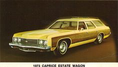 1973 Chevrolet Caprice Estate Station Wagon. Ours was almost exactly like this one. Key feature: Fully disappearing tailgate and rear windscreen.