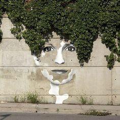creativity murales