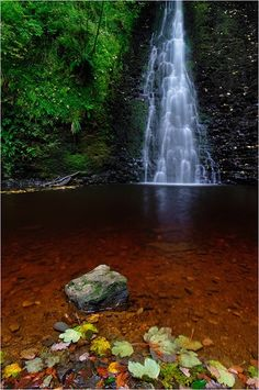 Foss Falls at Sneaton Forest near Whitby
