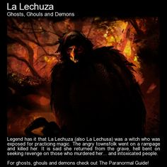 La Lechuza.   Shapeshifter that appears as a ghostly witch or a human sized bird with a woman's face.   http://www.theparanormalguide.com/blog/la-lechuza