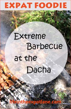 As an expat living in Armenia, I learned that a picnic barbecue is not just a barbecue. It's an extreme barbecue. You take a live sheep, and . . . well just read the rest. Not for the squeamish. #Armenia #barbecue