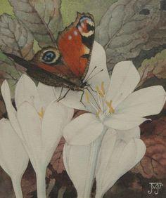 Voerman jr. J.    Herfsttijloos met dagpauwoog, aquarel op papier 13,1 x 11,0 cm, gesigneerd r.o. met monogram