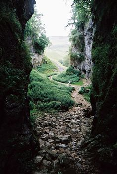 Trow Gill, Yorkshire Dales, England