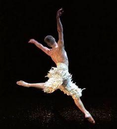 Adam Cooper in Swan Lake Ballet Boys, Male Ballet Dancers, Adam Cooper, Guy Dancing, Billy Elliot, Royal Ballet, Dance Photos, Swan Lake, Dance Photography