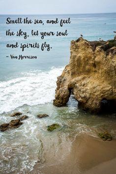 Travel Quotes | Jolt your senses.