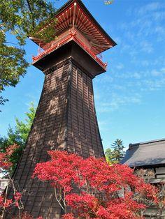 【境内の木】平成24年11月5日(月)ドウタンの木と時報堂。