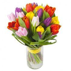 Tulips, Interflora, Finnish Flower Shop, March 2016