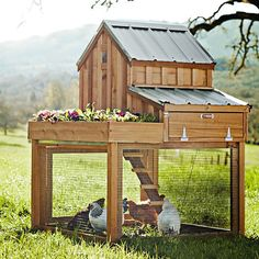 Coops for chickens with style! Pictured: Williams-Sonoma Cedar Chicken Coop & Run with Planter Cheap Chicken Coops, Chicken Coop Run, Portable Chicken Coop, Backyard Chicken Coops, Building A Chicken Coop, Chickens Backyard, Chicken Coup, Simple Chicken Coop, Chicken Coop Blueprints