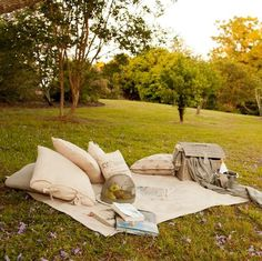 Pack a picnic and enjoy the sunshine in the glorious grounds at Spicers Clovelly Estate #hoorootopromanticstays