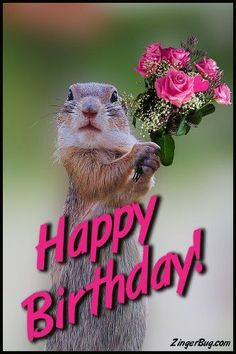 Happy Birthday Cute Squirrel With Bouquet Glitter Graphic, Greeting, Comment, Meme or GIF Happy Birthday Animals Funny, Happy Birthday Squirrel, Happy Birthday Greetings Friends, Birthday Wishes Funny, Animal Birthday, Facebook Birthday, Happy Birthday Wallpaper, Cute Squirrel, Squirrels