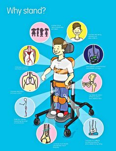 The importance of standing, another reason why adaptive equipments such as show here has been used for Quadriplegics