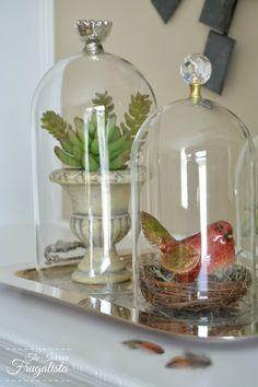 How to make DIY glass cloches in two easy steps with glass furniture knobs for budget-friendly DIY home decor to use year-round. Upcycled Home Decor, Diy Home Decor, Cloche Decor, Plant In Glass, Glass Furniture, Furniture Knobs, Glass Domes, Glass Jars, Sea Glass