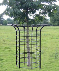 Tree Fence Protection - There are several reasons why a homeowner might want to put in a pool fence. Apart from it, there Fence Trees, Deer Fence, Apple Tree Care, Tree Grate, Deer Resistant Garden, Tree Stakes, Cottage Garden Design, Backyard Projects, Garden Structures