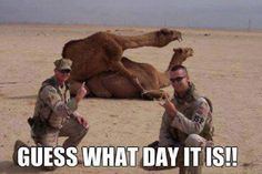 Check out: Guess what day it is? One of our funny daily memes selection. We add new funny memes everyday! Bookmark us today and enjoy some slapstick entertainment! Funny Quotes, Funny Memes, It's Funny, Madea Quotes, Insirational Quotes, Army Funny, Funny Man, Dump A Day, What Day Is It