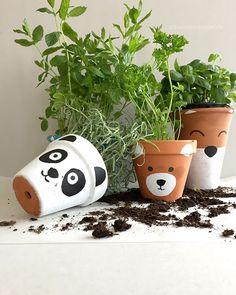 schaeresteipapier: Blumentopf bemalen - es wird tierisch! Panda, Bär und Fuchs; basteln mit den kids, Terrakotta