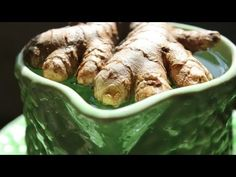 Growing Your Own Ginger and Turmeric