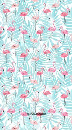 Flamingo - Verão - Animais