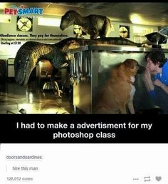 Laugh of the day! Mock Jurassic Park Pet Training Commercial -- perfect :)