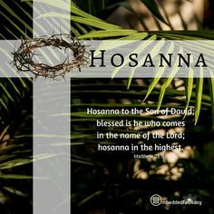 Palm Sunday is all about the voluntary death of Jesus. He came to die. He planned to die. He intended to die. Palm Sunday Quotes Jesus, Sunday Bible Verse, Sunday Prayer, Scripture Verses, Psalm Sunday, Blessed Sunday, Bible Scriptures, Sunday Wishes, Sunday Greetings