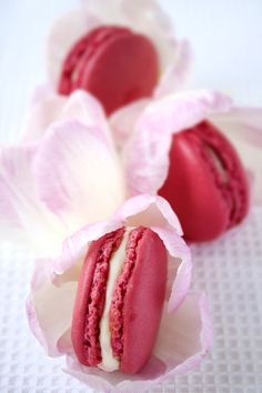 Fig Macarons with Lychee Buttercream
