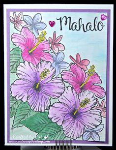 Technique Hop ~ Color Your World ~ Hawaiian Hibiscus ~ Watercolor ~CatScrapbooking.com  Hawaiian Hibiscus B1527
