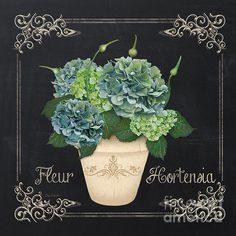 New print available on plout-gallery.artistwebsites.com! - 'Fleur Hortensia-jp3019' by Jean Plout - http://plout-gallery.artistwebsites.com/featured/fleur-hortensia-jp3019-jean-plout.html
