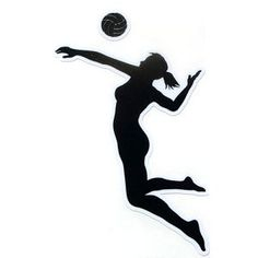Image result for volleyball silhouette