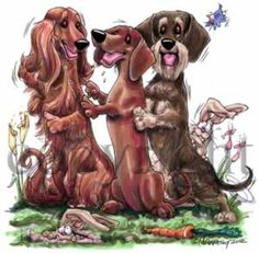 Dachshunds at Play