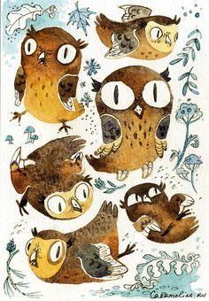 caramelina:    Crazy owl!