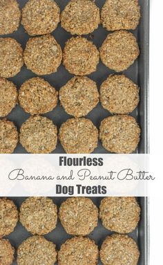 Super quick and easy, using only five ingredients these gluten free, flourless banana and peanut butter dog treats will make their tail wag for sure. We all deserve something special from time to t…