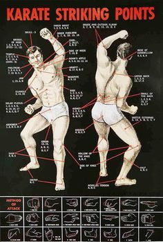 Here is a more detailed diagram of the various striking points in Karate.