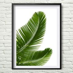 Shop the latest Palm Leaf Print products from BikiniDotCom, Animetee, Vagabond-goods, The Shopping Bag and more on Wanelo, the world's biggest shopping mall. Tropical Decor, Tropical Prints, Leaf Prints, Wall Art Prints, Decoration, Art Decor, Room Decor, Leaf Art, Tropical Leaves