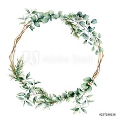 Hand painted eucalyptus branch and leaves isolated on white background. Floral illustration for design, print, fabric or background card floral Watercolor eucalyptus branch wreath. Plains Background, Background Vintage, Background Designs, Watercolor Leaves, Watercolor Background, Floral Wreath Watercolor, Illustration Blume, Wreath Drawing, Flower Doodles