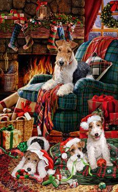 Wire Fox Terrier -  Christmas Greetings
