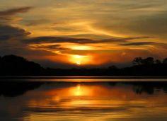 Nascer do sol Amaz™onia