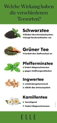 Dass Tee gesund ist, ist kein Geheimnis. Aber tatsächlich hat jede Sorte ihre eigenen Benefits. Wir verraten dir, welche Teesorte was in deinem Körper bewirkt.