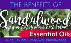 Benefits of Sandalwood (Australian, East African, East Indian) Essential Oils Sandalwood Essential Oil, Essential Oils, Benefit, Stress, Essentials, African, Indian, Anxiety