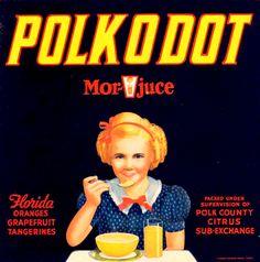Polk O Dot :: Florida Southern College Fruit and Vegetable Crate Label Collection Vintage Florida, Old Florida, Advertising Ads, Vintage Advertisements, Vintage Labels, Vintage Ads, Type Posters, Art Posters, Florida Southern College
