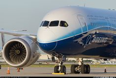 Boeing N787BX Boeing 787-8 Dreamliner aircraft picture
