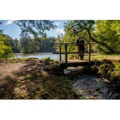 fototapete vom kassler bergpark, wilhelmshöhe, teppichbeete am ... - Baum Interieur